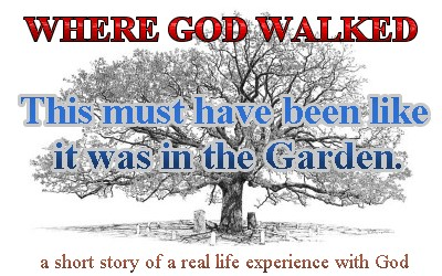 """Where God Walked"" – a short story of a real life experience with God."