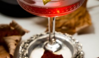 Raspberry Lemon Zest Martini