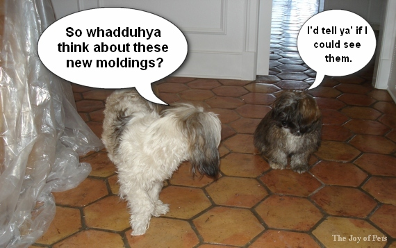 dogs and baseboards