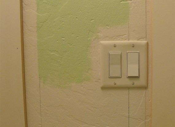 double light switch and moldings