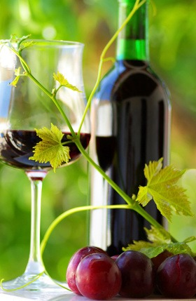 Glass and bottle of red wine with green leaf.