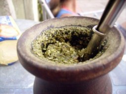 Yerba Mate and its properties
