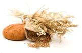 Wheatgrass properties. Health benefits