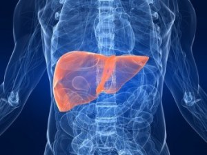 Hepatomegaly (Enlarged Liver and Spleen): Causes and Natural Treatment
