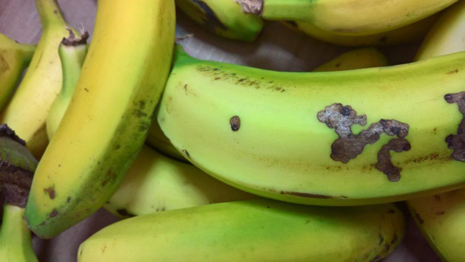 Banane, kasaan media, 2017