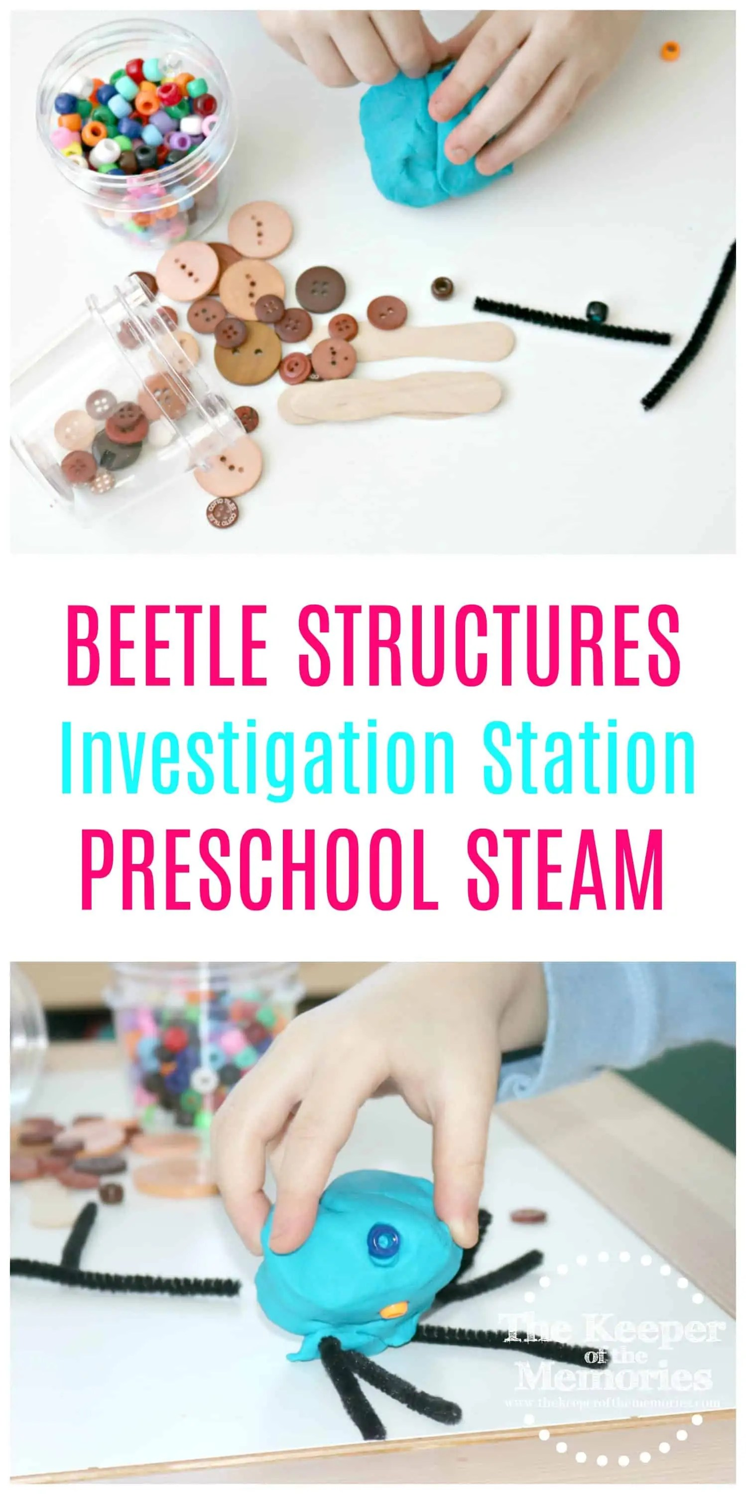 Beetle Structures 2