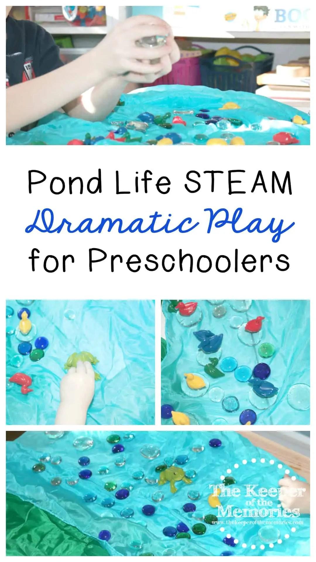 Pond Life Steam