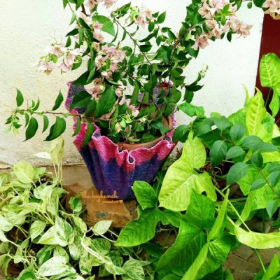 hypertufa planter, tutorial, akila, gardening project, diy