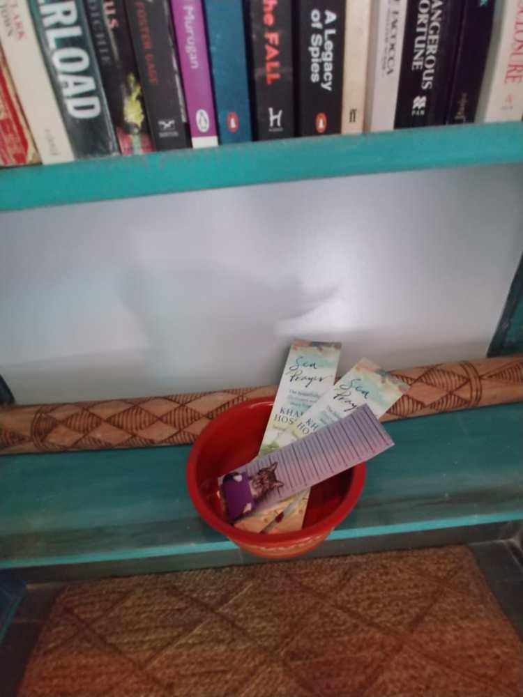 distressed blue shelves, carpets in Radhika Yuvaraj's library space.