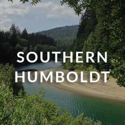 Southern Humboldt homes for sale