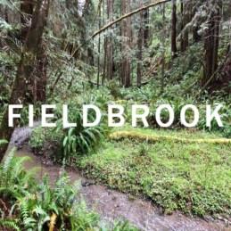 Fieldbrook - COMMUNITY IMAGE (2)