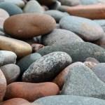 Stone The False Prophet Among You