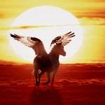 5 Myths about Spirit Travel