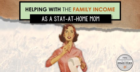 Helping with the Family Income as a Stay-at-Home Mom