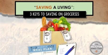 Saving a Living: 3 Keys to Saving on Groveries
