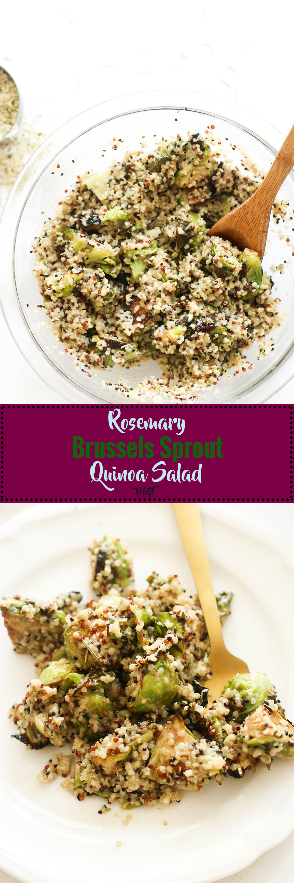 This rosemary brussels sprout quinoa salad is vegan, gluten free,incrediblydelicious, and proteinpacked. It requires minimal ingredients and tons of flavor.