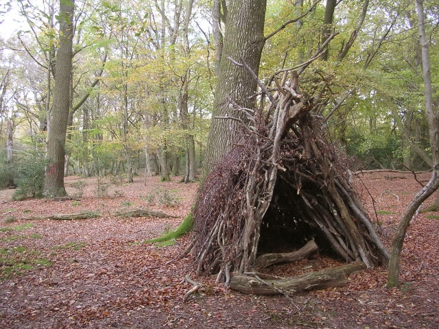 im Champion / Temporary wooden shelter on Lyndhurst Hill, New Forest, via Wikimedia Commons
