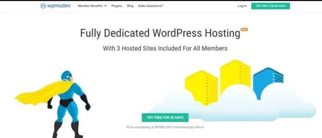 Wpmudev hosting review