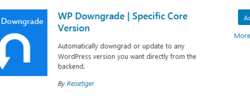 Activate WP Downgrade plugin