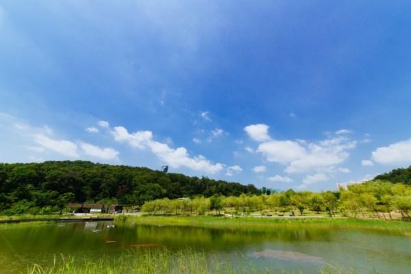Dream forest top10 Parcs - blog coree du sud - the korean dream 2