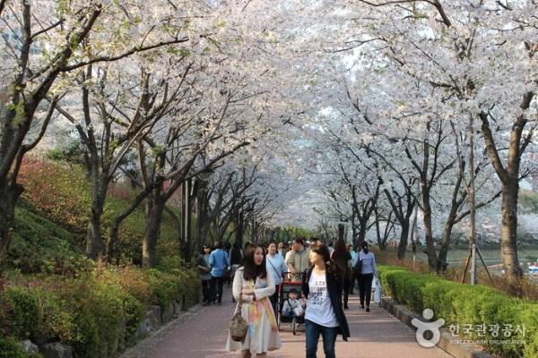 Seokchon lake Seoul top10 Parcs - blog coree du sud - the korean dream