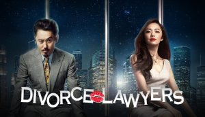 Korean Divorce Lawyers, English-Speaking Korean Divorce Lawyers