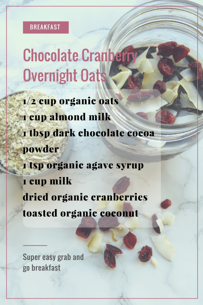 Chocolate Cranberry Overnight Oats Ingredients // The Krystal Diaries