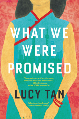 what-we-were-promised-lucy-tan
