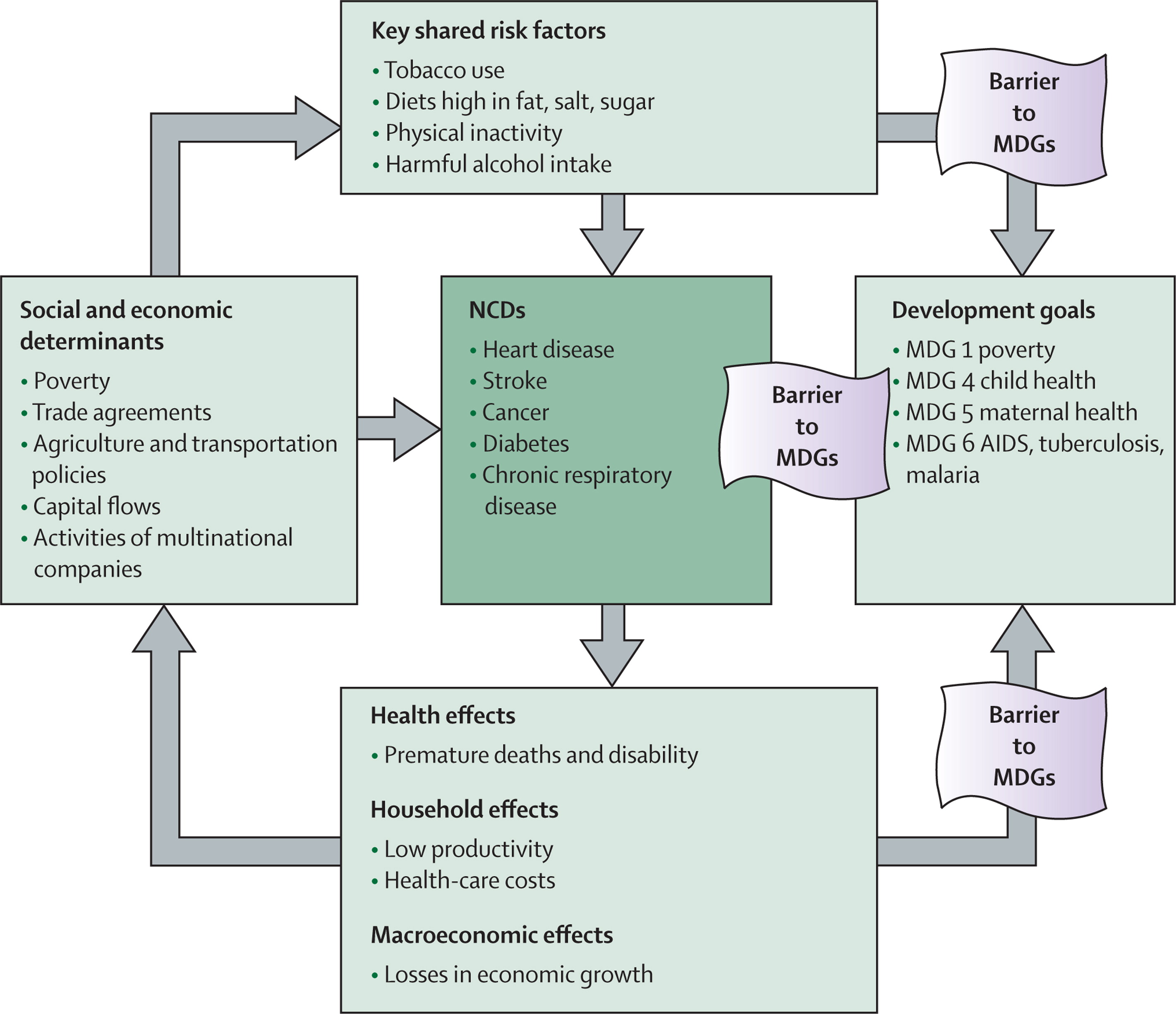 Priority Actions For The Non Communicable Disease Crisis