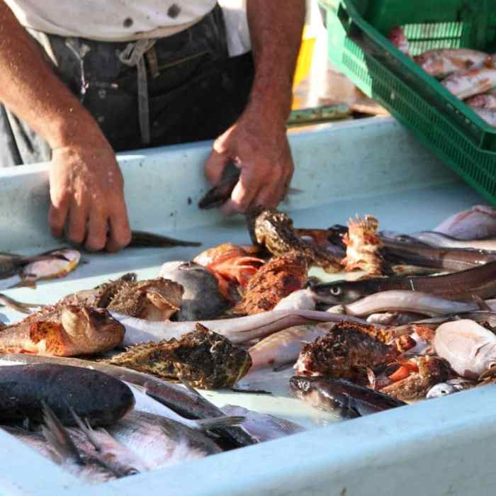 Fish market at the Vieux Port of Marseille