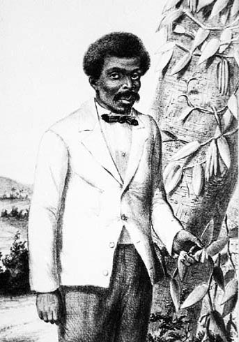 Lithograph of Edmond Albius posing next to a vanilla vine
