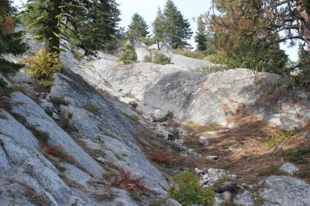 IMG_2151 Bogus Mountain Boise, ID