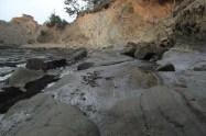 IMG_2481 western Oregon coast, the landrovers