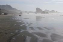 IMG_2544 western Oregon coast, the landrovers