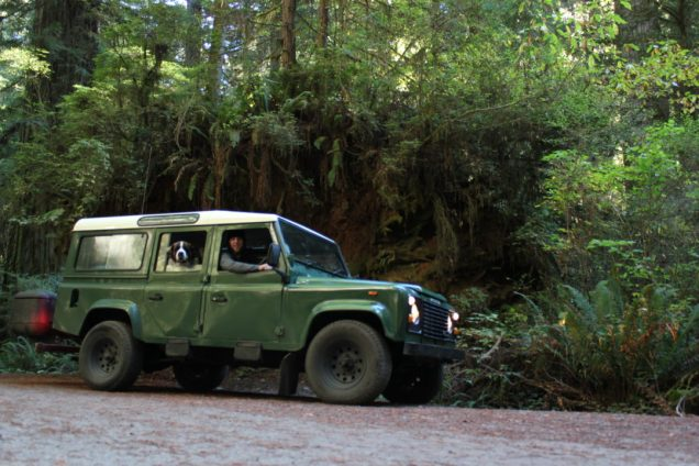 IMG_2594 northern California, The Redwoods, the landrovers, 1984 land rover defender