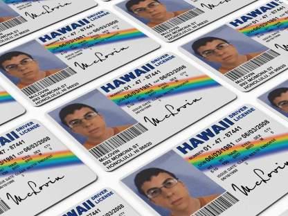 McLovin Superbad Novelty Driving License ID Card Replica