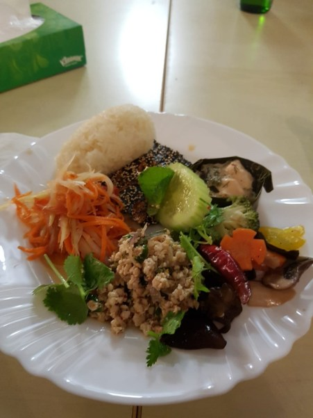 My plate with spicy papaya salad, sticky rice, minced beef salad, and steamed vegetables
