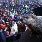 Six more weeks of winter: Groundhog Day 2021 held virtually