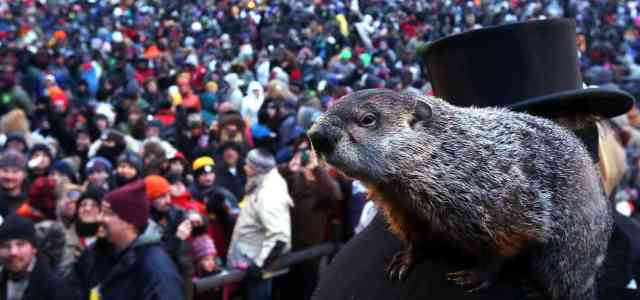 Six more weeks of winter: Groundhog Day 2021 held virtually