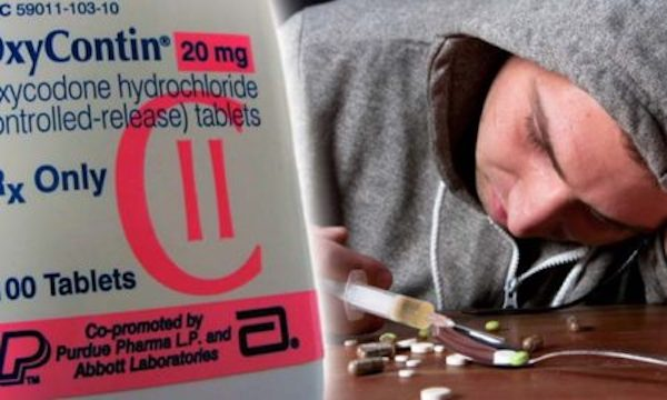 New Harvard Study Confirms Big Pharma & Federal Govt Root Cause Of Opioid Epidemic
