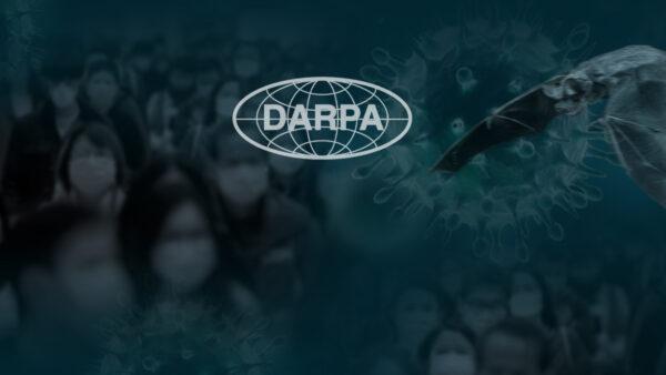 Fledermäuse, Gene Editing und Biowaffen: DARPA Experimente wecken Bedenken inmitten des Coronavirus-Ausbruchs