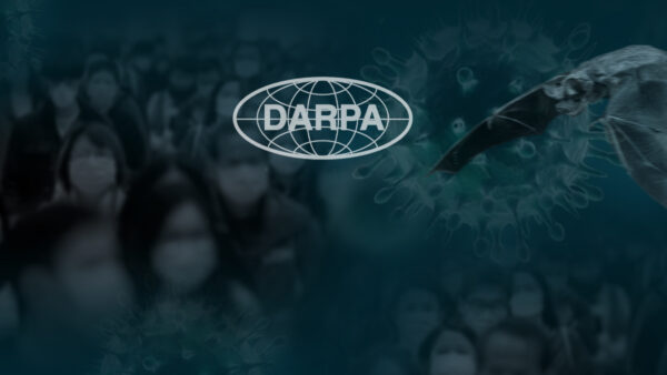 bats-DARPA-e1580430556712.jpg?resize=600%2C338&ssl=1