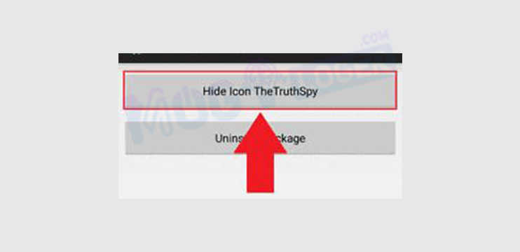 Hide Icon TheTruthSpy