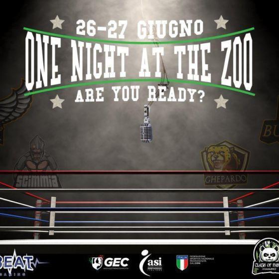 photo 2019 06 10 18 38 09 - Clash of Panda presenta: One night at the Zoo