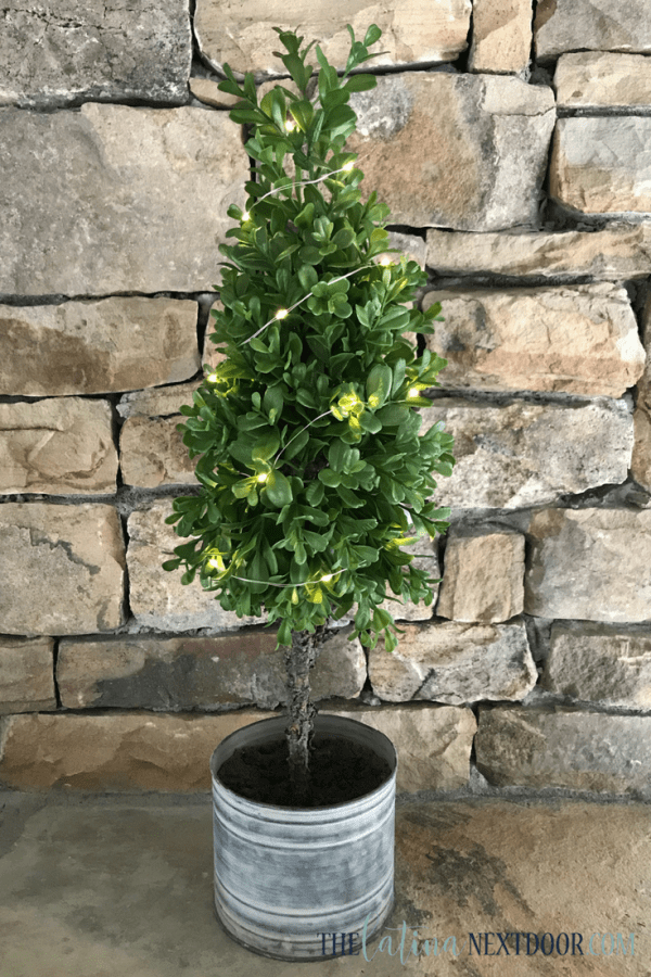 The Best Farmhouse Topiaries The Best Farmhouse Topiaries