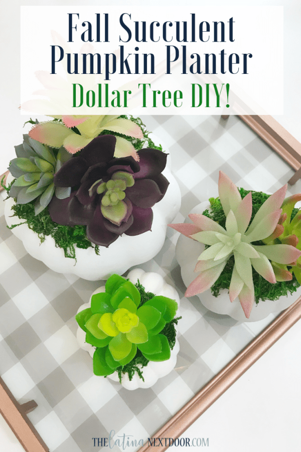 DIY Dollar Tree Fall Succulent Pumpkin Planter Pin DIY Dollar Tree Fall Succulent Pumpkin Planter