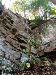 rocks near boardtree falls