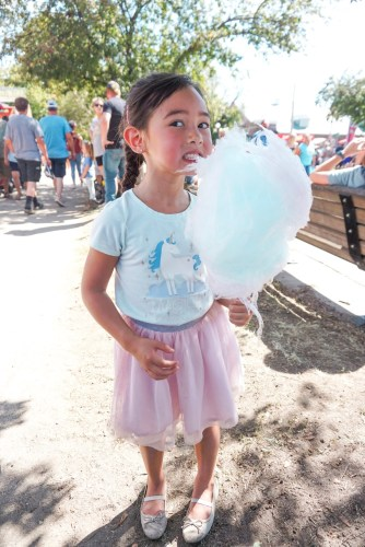 Cotton Candy at the Iowa State Fair
