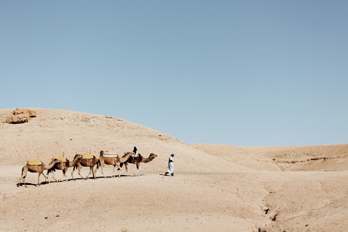 SCARABEO CAMP // GLAMPING IN THE MOROCCAN DESERT