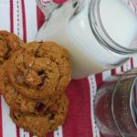 Ginger Oatmeal Cookies w/ Cranberries & Reeses